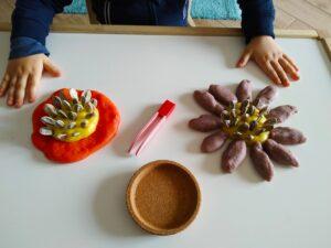 Pinze e semi di zucca