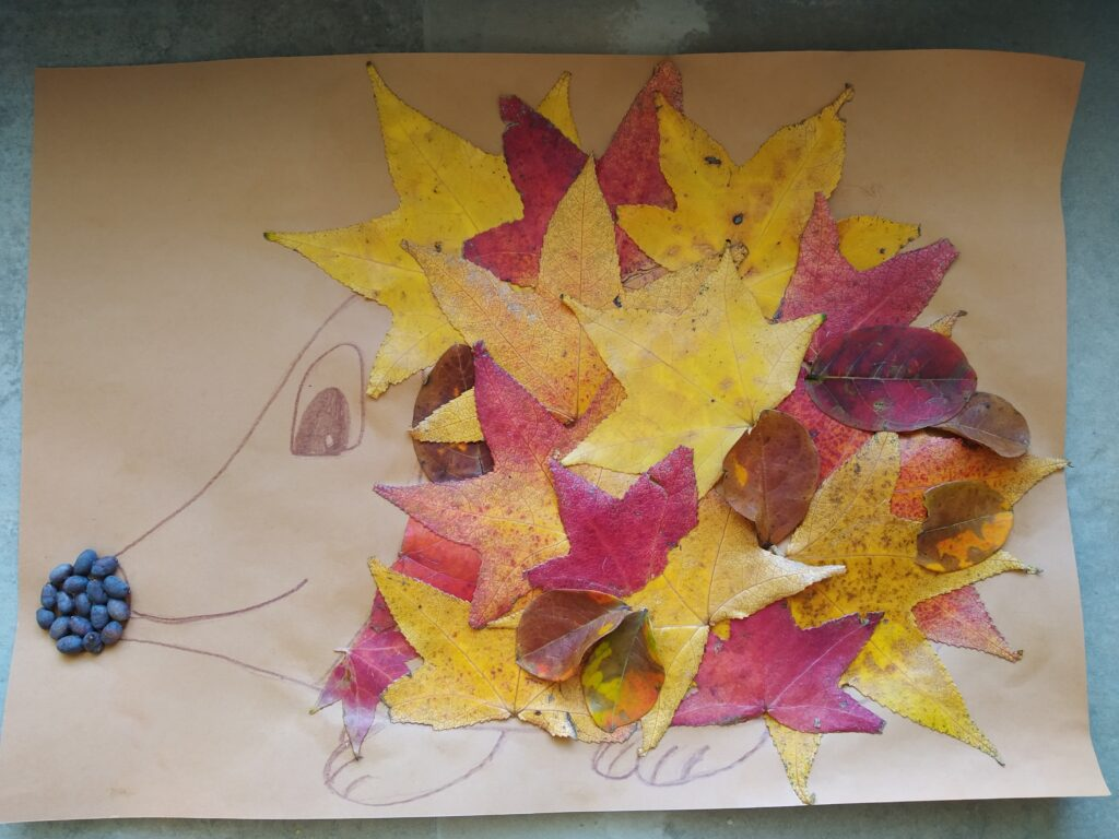 Riccio d'autunno